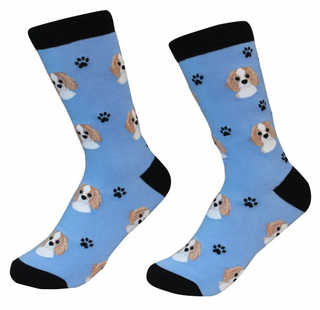 Cavalier King Charles Socks by Sock Daddy