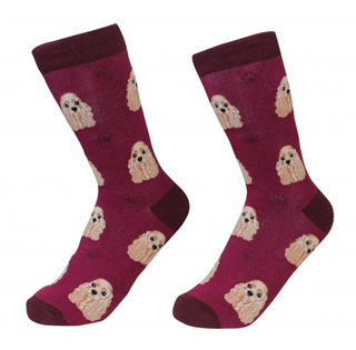 Cocker Spaniel Socks by Sock Daddy
