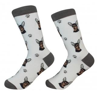Chihuahua Socks by Sock Daddy
