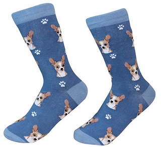 Chihuahua Socks by Sock Daddy