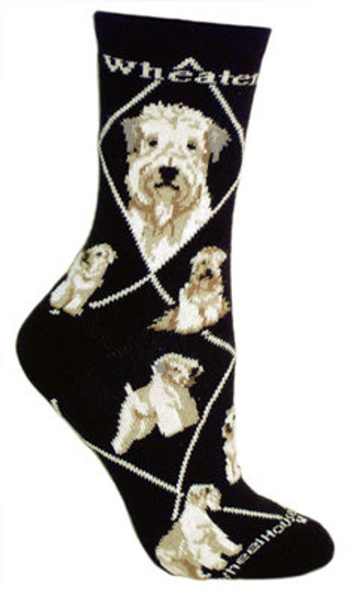 Wheaten Terrier socks on black by Wheel House Designs