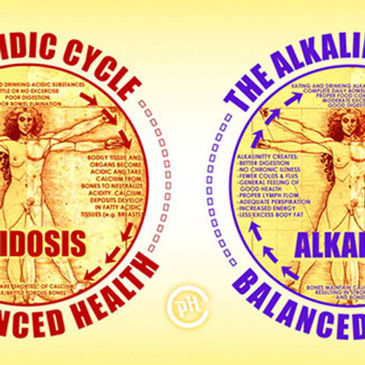 Acid / Alkaline Cycle of the Body