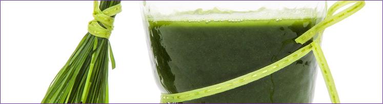 4-744px-barley-grass-juice.jpg