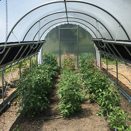 3 Best Backyard DIY Greenhouse Kits | High Tunnels for Growing Your Own Food