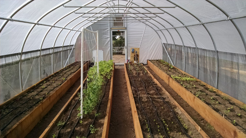 5 Ways to Make More Money With a High Tunnel Hoop House