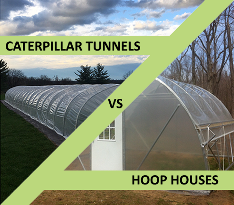 Caterpillar Tunnel vs Hoop House - Low Cost Growing Structures Compared