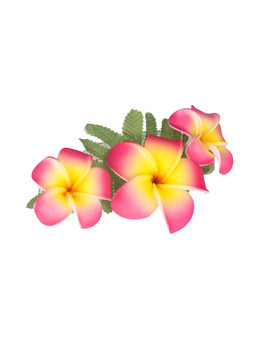 "Hawaiian Flower Hairclip with Fern and Pink-Yellow Plumerias Hair Accessory Flower Design Bendable Foam Large Banana Clip Color: Pink/Yellow Size: 3"" X 5"" Imported"