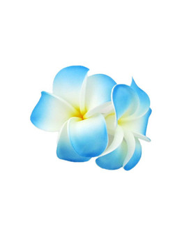 "Hawaiian Plumeria Hair Clips 2 Large Flower Cluster White Blue Perfect for weddings, luaus, graduations, fun pictures, and much more 2 Flower Cluster Hair Accessory Bendable Foam Flower Large Banana Transparent Clip Color: Blue Size: 3"" X 5"" Imported"