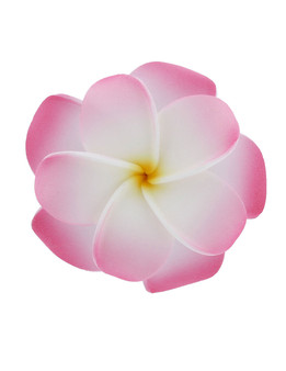 Hawaiian Foam Flowers Accessories are the Hottest Fashion Statement today. They are Stylish and Stunning! Made of bendable foam, and formed into Hawaii's beautiful flower. They are perfect for weddings, luaus, graduations, fun pictures, and much more.  Size: 3 X 3 Inches