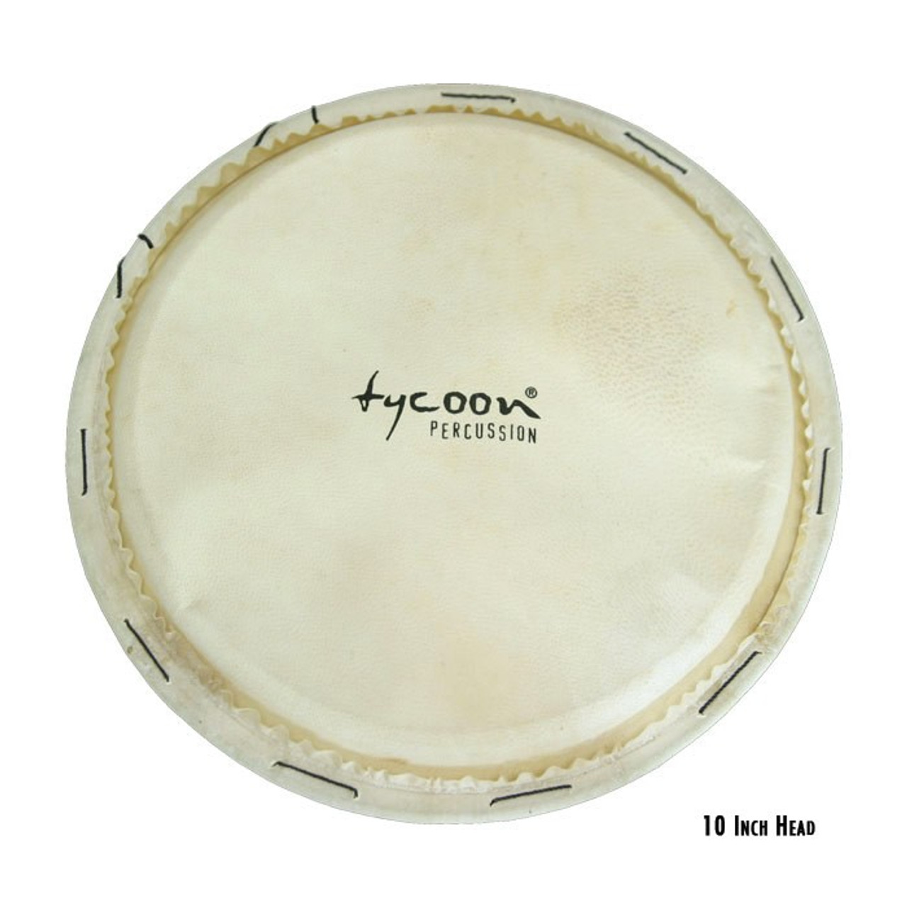 10 inch. Artist Series Replacement Conga Head