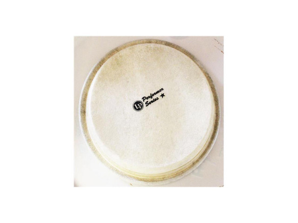 LP Perf 6.75 Inreplacement Head Bongo (LPP663A)