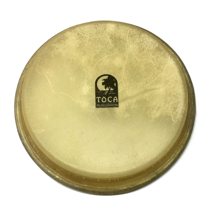 Toca Large Bongo Head for 3900 Traditional (TP-37008)
