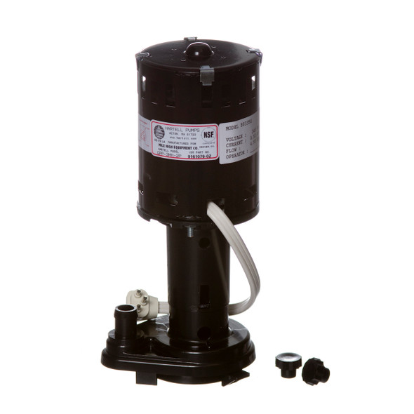 Image of the Ice-O-Matic 9161079-06 Replacement Water Pump