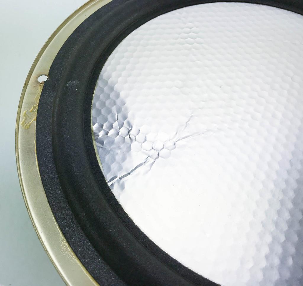"""Carver Amazing Loudspeaker 12"""" Honeycomb Woofer; SW1220-FL; Dynavox (2/2)"""