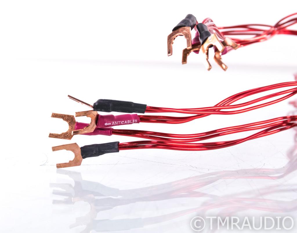 Anticables Level 3.1 Speaker Cables; 10ft Pair