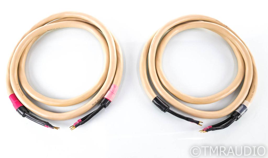 Tara Labs Space & Time Quantum III Speaker Cables; 10ft Pair; QmIII