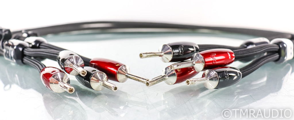 AudioQuest William Tell Silver Speaker Cables; 8ft Pair; AG; 72v DBS