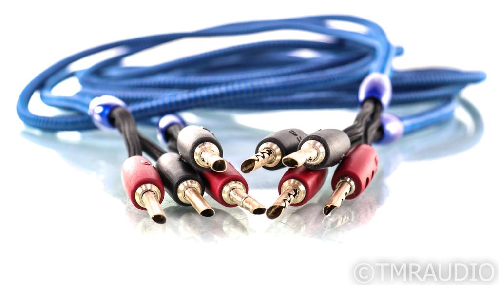 AudioQuest Type 4 Speaker Cables; 10ft Pair
