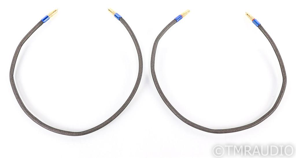 Tara Labs RSC Air 2 RCA Cables; 1m Pair Interconnects