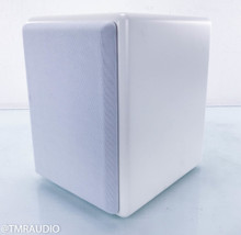 "M&K Sound V8 8"" Powered Subwoofer; White"