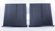 Classe CT-M300 Mono Power Amplifier; Pair; CTM300
