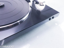 Denon DP-300F Turntable (No Cartridge); DP300F