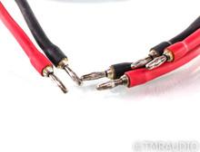 WireWorld Equinox 5 Biwire Speaker Cable; Single; 2m
