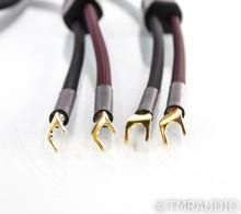 Transparent Audio Plus Speaker Cables; Gen 5; 12ft Pair