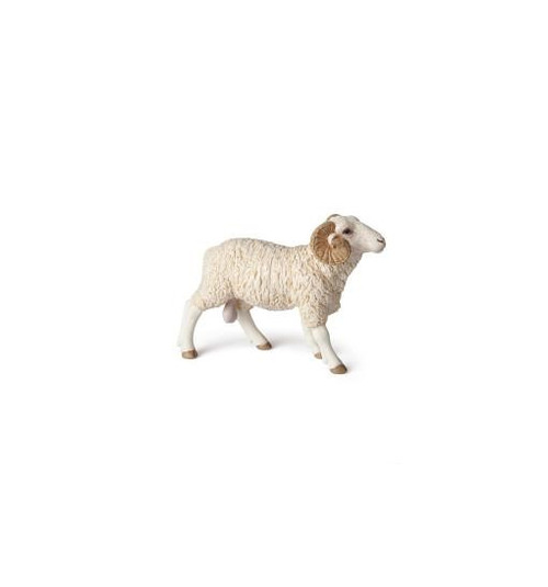 This beautifully hand-painted toy ram figurine from Papo is as versatile as it is realistic - perfect for educational, play, and therapy settings.  More imposing than his female counterpart, the ram is distinguishable by the horns on each side of his head. The size of these horns plays a part in where the ram is situated in the hierarchy of his herd.