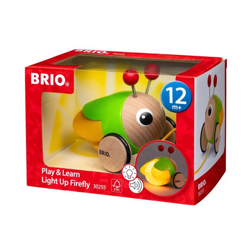 Play & Learn Light Up Firefly