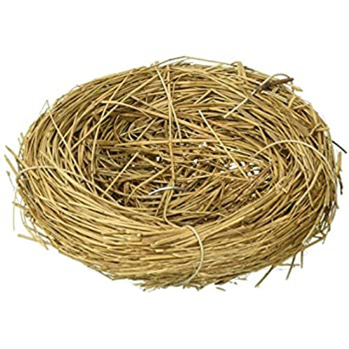 mini Bird's Nest