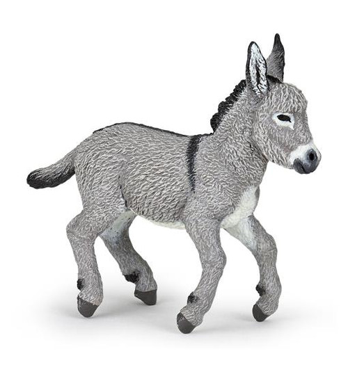 This Provence donkey foal comes from a proud line of domesticated donkeys in service to nomadic shepherds.