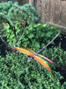 """Copper Dragonfly - Vented Wings - 16"""" Overall Wingspan"""