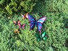 "Copper Flying Butterfly - 4"" Overall Wingspan"