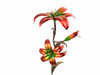 "Copper Lily Flower - Double Bloom w/Single Bud - 24"" Tall"