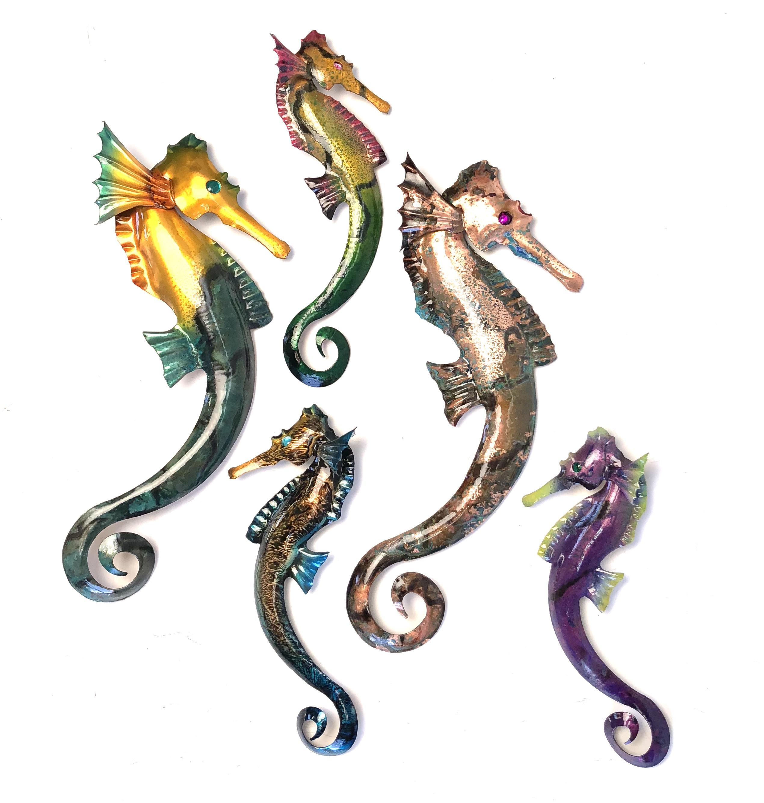 seahorse-group.jpg