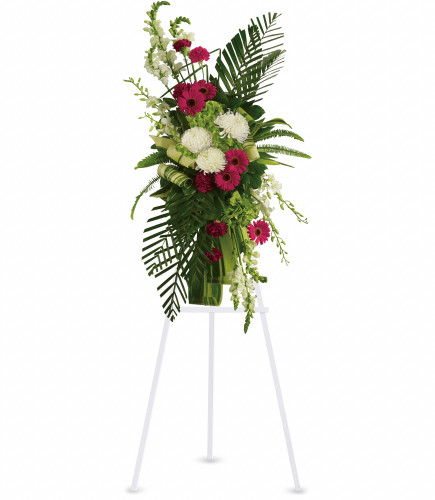 My Love Reflected Standing Spray from Sympathy Flower Shop. Beautiful flowers such as red gerberas and carnations complement the white orchids, white snapdragons and white chrysanthemums, all set against the tropical palm leaves and ferns. South Houston funeral home delivery. SKU SYM615