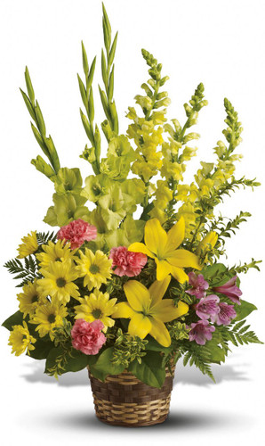 Vivid Memories by Sympathy Flower Shop. This vivid funeral basket includes yellow lilies, purple alstromeria, yellow gladiolas, pink carnations, yellow snapdragons, and yellow daisies in a wicker basket. Funeral flowers in Houston TX. SKU  SYM406