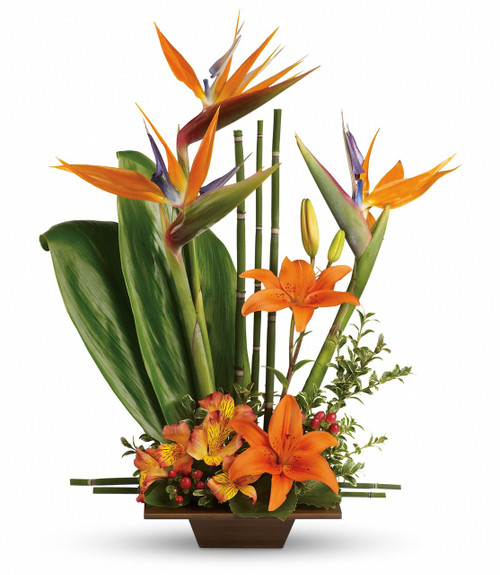 Tropical Grace Funeral Arrangement