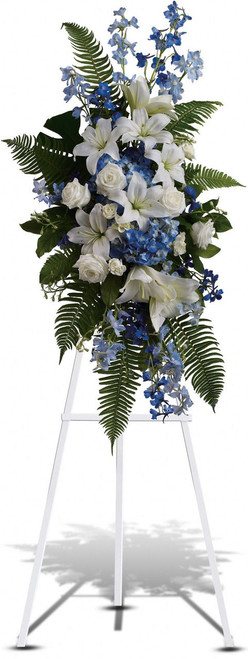 Blue Breeze Standing Spray by Sympathy Flower Shop. The lovely flowers such as white oriental lilies and white roses blend beautifully with the blue delphinium and blue hydrangea, accented amidst ferns for a stunning remembrance. Free Baytown funeral flower delivery for online orders.  SKU SYM602