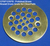 CPSP12SPB: Polished Brass Round Drain Grate for ClearPath