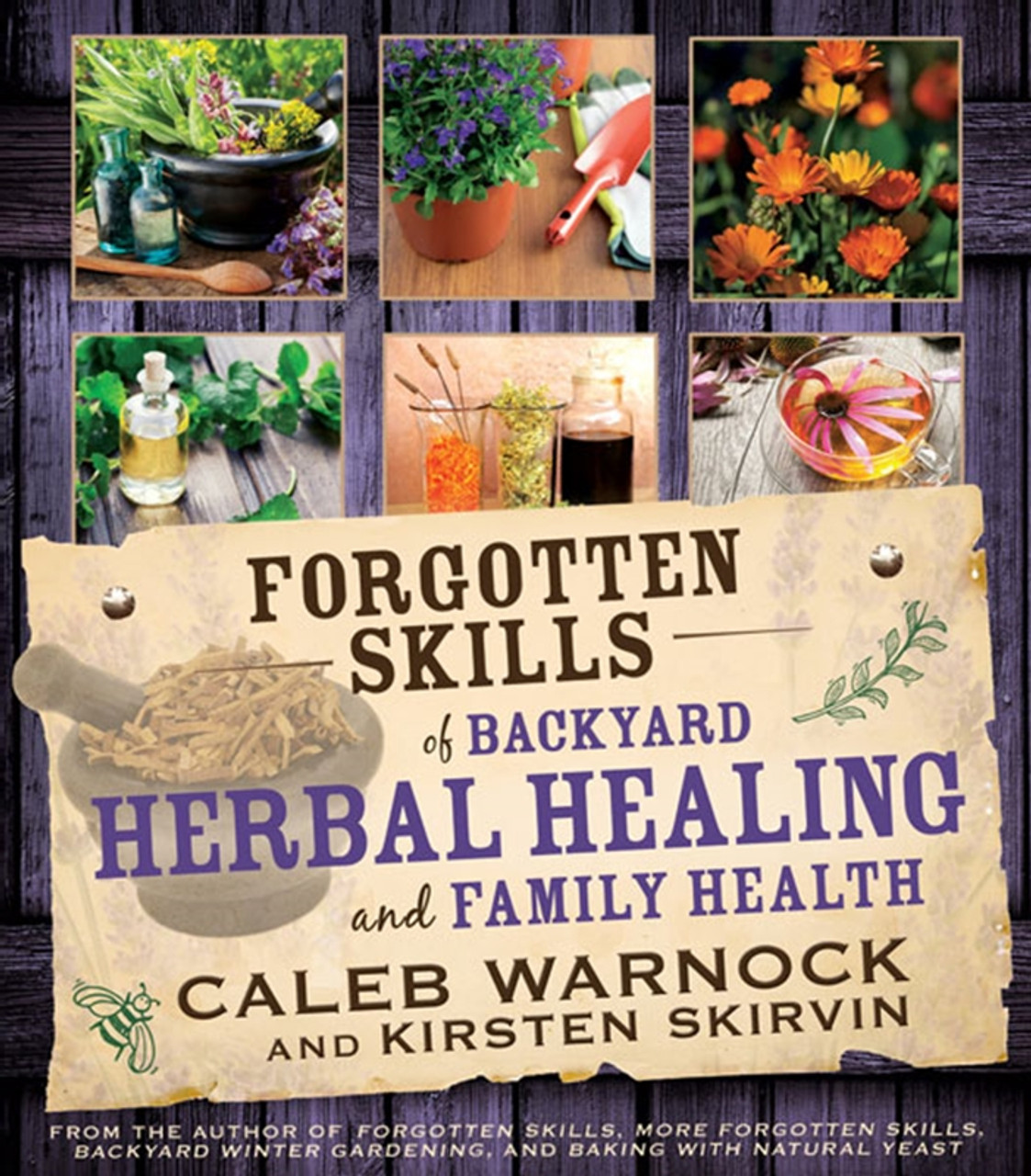 Forgotten Skills of Backyard Herbal Healing and Family Health - (Paperback) *