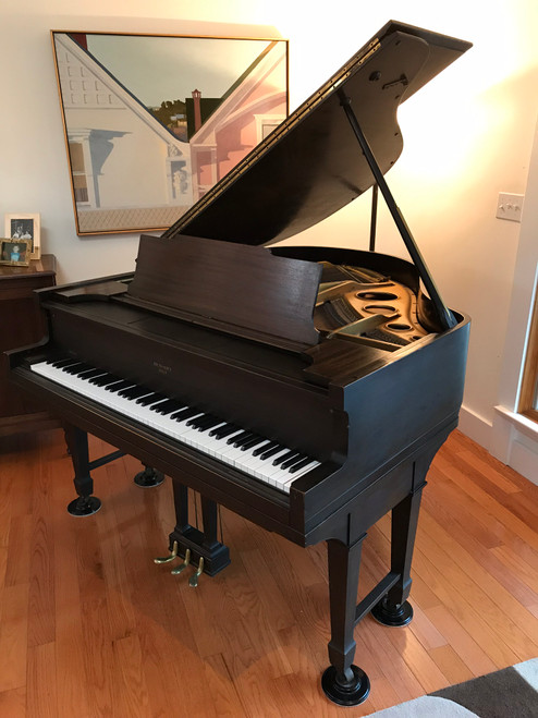 Vintage 1920's George Steck Player Baby Grand Piano Duo-Art Rolls Bench