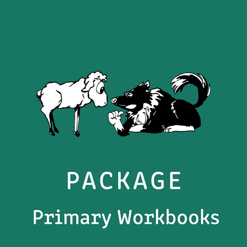 Package - Primary Intensive Reading Program - Teacher's Manual and all 4 Student Workbooks - Reading Age: 7.0 - 10.6