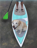 SUP dog traction pad deck nose