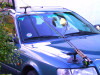 removable fishing rod car rack