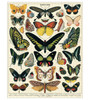 1000-Piece French Butterflies Papillons Jigsaw Puzzle