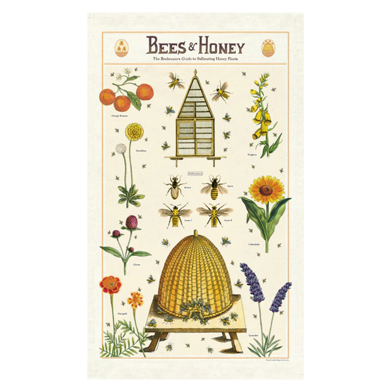 Bees & Honey Beekeeper's Guide to Pollinating Plants Kitchen Towel
