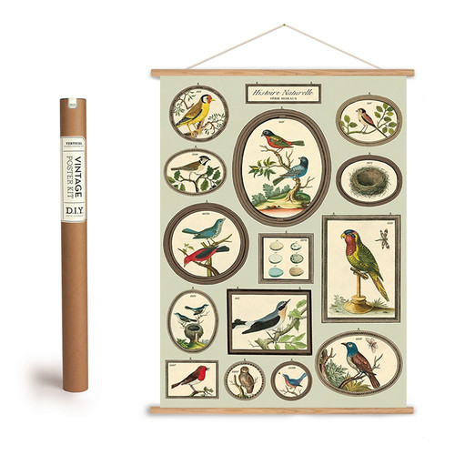 Natural History of Birds Art Poster + Hanging Kit
