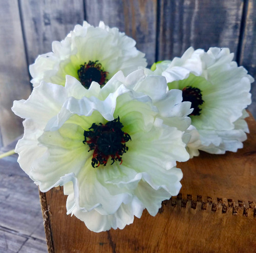 "Set of Three White 25"" Oriental Poppy Stems"